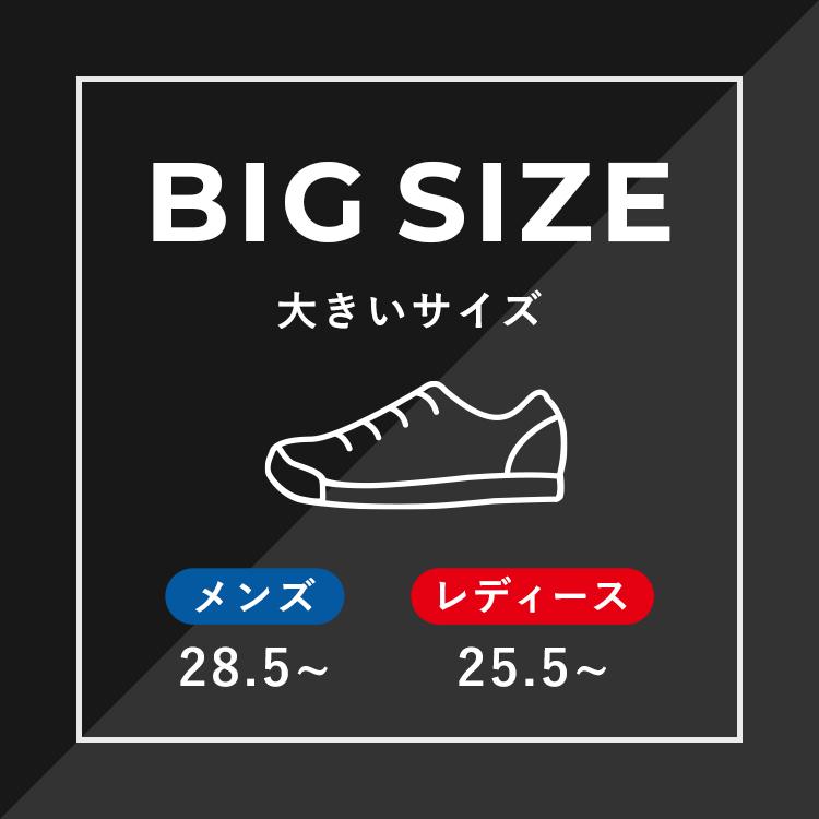 """大きいサイズの靴をお求めの方へ!<br>メンズ:28.5~ <br class=""""sp-display"""">レディース:25.5~<br>豊富なサイズ取り揃えております。"""